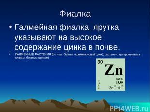 Фиалка Галмейная фиалка, ярутка указывают на высокое содержание цинка в почве. (