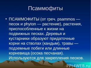 Псаммофиты ПСАММОФИТЫ (от греч. psammos — песок и phyton — растение), растения,