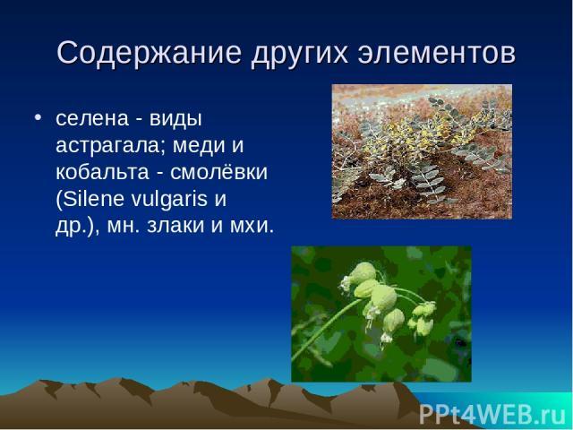 Содержание других элементов селена - виды астрагала; меди и кобальта - смолёвки (Silene vulgaris и др.), мн. злаки и мхи.