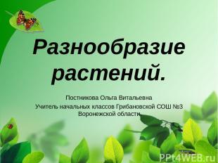 Разнообразие растений. Постникова Ольга Витальевна Учитель начальных классов Гри