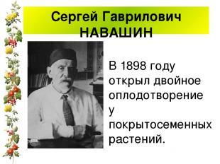 Сергей Гаврилович НАВАШИН В 1898 году открыл двойное оплодотворение у покрытосем