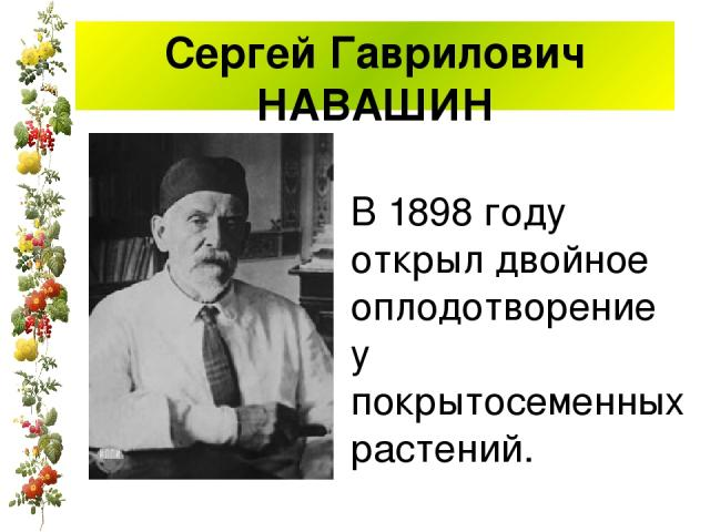 Сергей Гаврилович НАВАШИН В 1898 году открыл двойное оплодотворение у покрытосеменных растений.