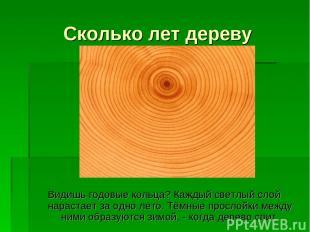 Сколько лет дереву Видишь годовые кольца? Каждый светлый слой нарастает за одно