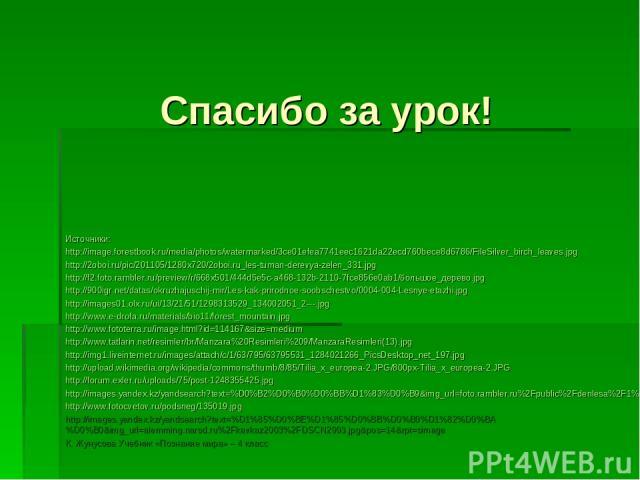 Спасибо за урок! Источники: http://image.forestbook.ru/media/photos/watermarked/3ce01efea7741eec1621da22ecd760bece8d6786/FileSilver_birch_leaves.jpg http://2oboi.ru/pic/201105/1280x720/2oboi.ru_les-tuman-derevya-zelen_331.jpg http://f2.foto.rambler.…