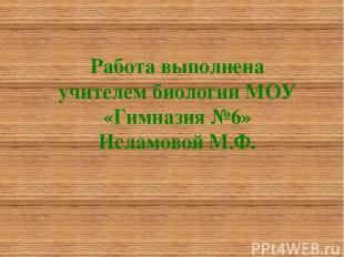 Работа выполнена учителем биологии МОУ «Гимназия №6» Исламовой М.Ф.
