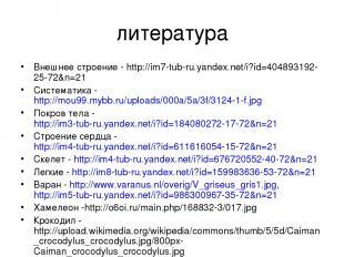 литература Внешнее строение - http://im7-tub-ru.yandex.net/i?id=404893192-25-72&