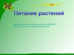 http://files.school-collection.edu.ru/dlrstore/d80bb457- b079-47f2-92e1-ca71ee5d