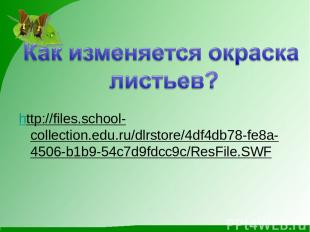 http://files.school-collection.edu.ru/dlrstore/4df4db78-fe8a-4506-b1b9-54c7d9fdc