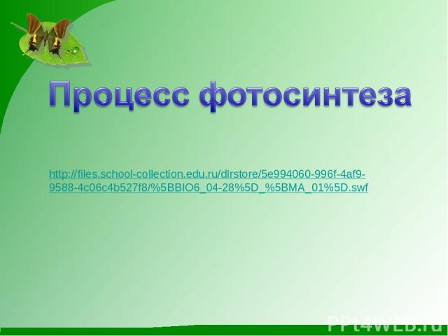 http://files.school-collection.edu.ru/dlrstore/5e994060-996f-4af9- 9588-4c06c4b527f8/%5BBIO6_04-28%5D_%5BMA_01%5D.swf
