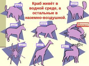 Здесь изображены животные. Какое из них живёт в другой среде обитания? нет Краб