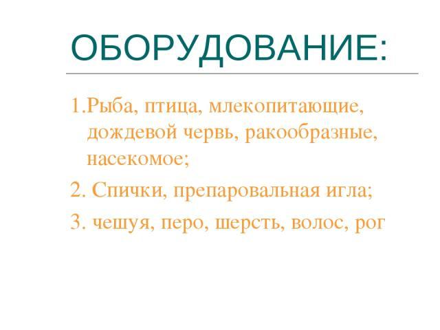 ОБОРУДОВАНИЕ: 1.Рыба, птица, млекопитающие, дождевой червь, ракообразные, насекомое; 2. Спички, препаровальная игла; 3. чешуя, перо, шерсть, волос, рог