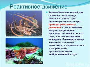 Реактивное движение Такие обитатели морей, как осьминог, каракатица, моллюск сал