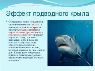 Эффект подводного крыла Совершенно иначе пользуются своими плавниками акулы. К п