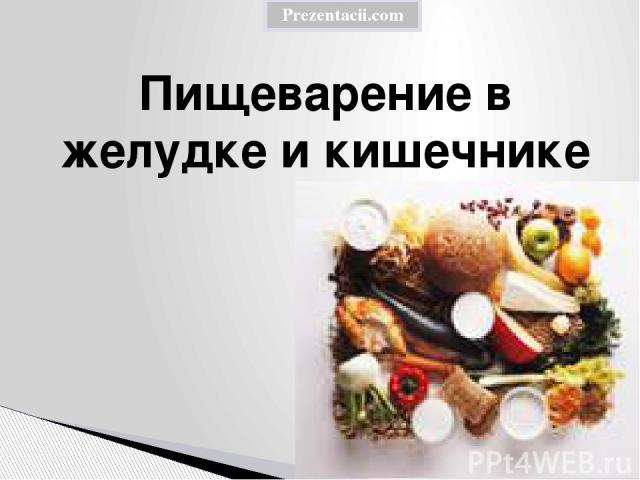 Пищеварение в желудке и кишечнике Prezentacii.com