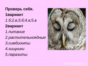 Проверь себя. 1вариант 1.б;2.в;3.б;4.а;5.в 2вариант 1.питание 2.растительноядные
