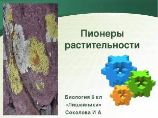 Пионеры растительности Биология 6 кл «Лишайники» Соколова И А LOGO