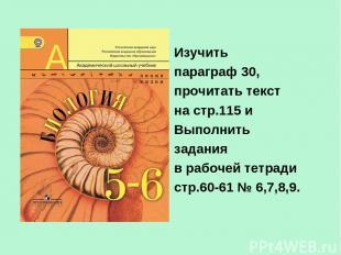 Изучить параграф 30, прочитать текст на стр.115 и Выполнить задания в рабочей те
