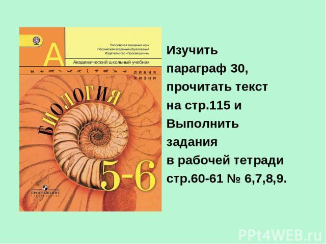 Изучить параграф 30, прочитать текст на стр.115 и Выполнить задания в рабочей тетради стр.60-61 № 6,7,8,9.