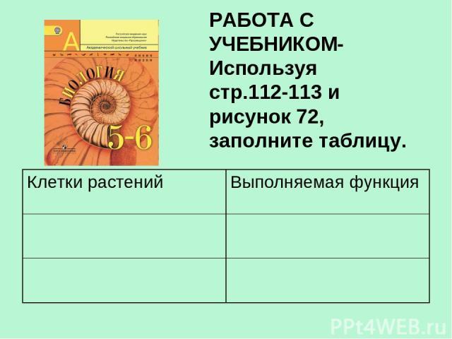 РАБОТА С УЧЕБНИКОМ- Используя стр.112-113 и рисунок 72, заполните таблицу. Клетки растений Выполняемая функция