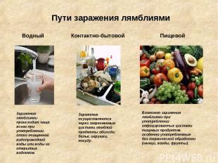 Пути заражения лямблиями Водный Контактно-бытовой Пищевой Заражение лямблиями пр
