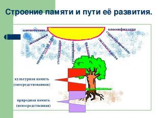 Строение памяти и пути её развития. аналогии ассоциации мнемический план схемати