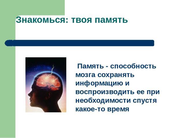 Знакомься: твоя память Память - способность мозга сохранять информацию и воспроизводить ее при необходимости спустя какое-то время