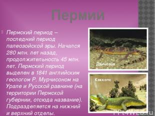 Пермий Пермский период – последний период палеозойской эры. Начался 280 млн. лет