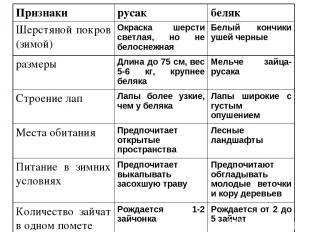 Признаки русак беляк Шерстяной покров (зимой) Окраска шерсти светлая, но не бело