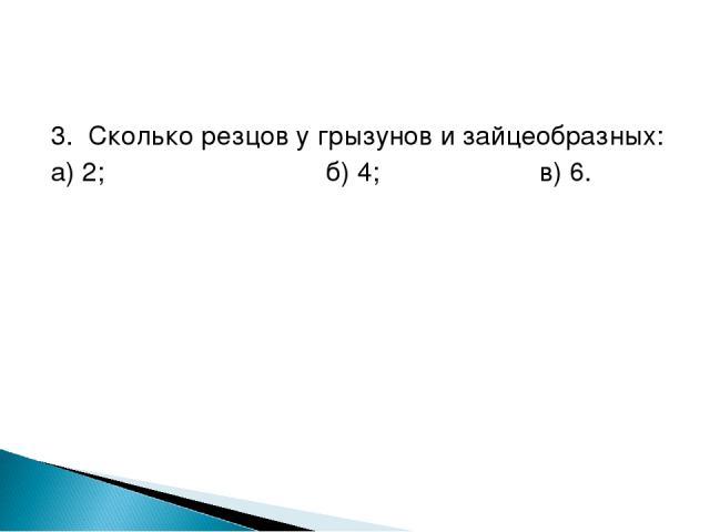 3. Сколько резцов у грызунов и зайцеобразных: а) 2; б) 4; в) 6.