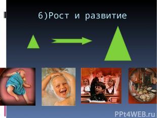 6)Рост и развитие