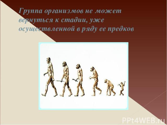 Группа организмов не может вернуться к стадии, уже осуществленной в ряду ее предков