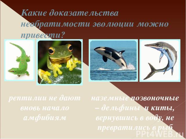 Какие доказательства необратимости эволюции можно привести? рептилии не дают вновь начало амфибиям наземные позвоночные – дельфины и киты, вернувшись в воду, не превратились в рыб