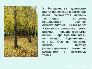 У большинства древесных растений переход в состояние покоя выражается осенним ли