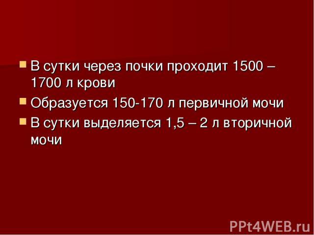 В сутки через почки проходит 1500 – 1700 л крови Образуется 150-170 л первичной мочи В сутки выделяется 1,5 – 2 л вторичной мочи