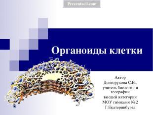 Органоиды клетки Автор Долгорукова С.В., учитель биологии и географии высшей кат