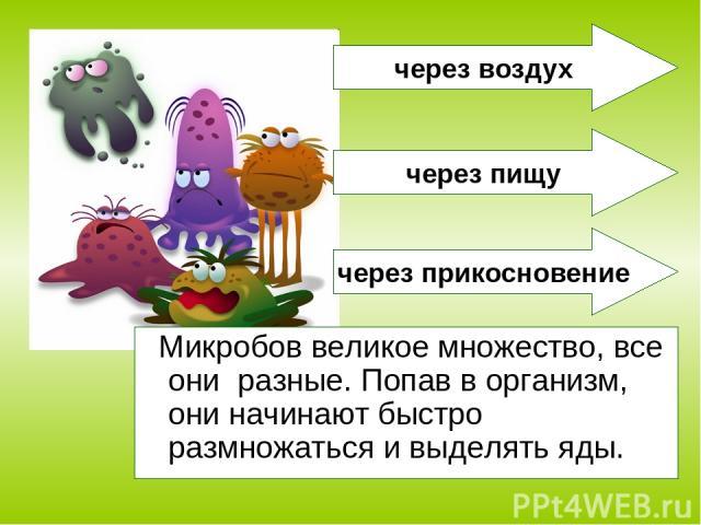 Микробов великое множество, все они разные. Попав в организм, они начинают быстро размножаться и выделять яды. через воздух через пищу через прикосновение