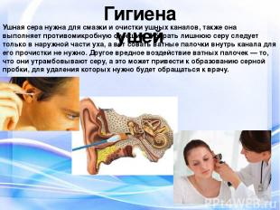 Гигиена ушей Ушная сера нужна для смазки и очистки ушных каналов, также она выпо
