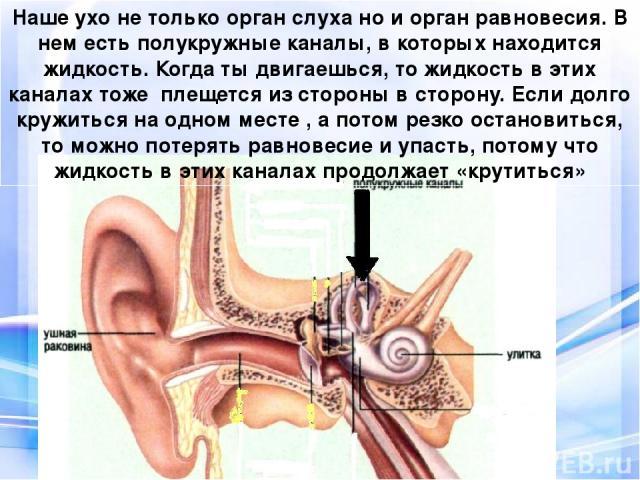 Наше ухо не только орган слуха но и орган равновесия. В нем есть полукружные каналы, в которых находится жидкость. Когда ты двигаешься, то жидкость в этих каналах тоже плещется из стороны в сторону. Если долго кружиться на одном месте , а потом резк…