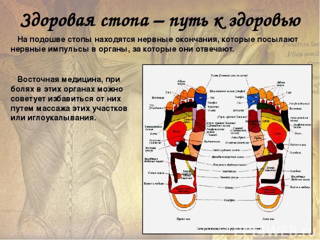 Как подобрать обувь при плоскостопии Обязательно - кожаный верх. Желательно и кожаная подошва; каблук невысокий, у детской обуви он должен занимать по длине не менее трети подошвы, чтобы поддерживать пятку и задний сегмент свода; носок широкий; хоро…