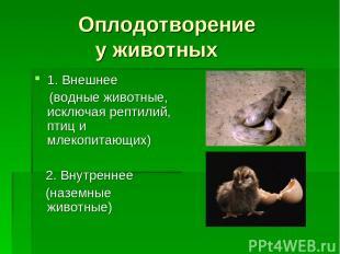 Оплодотворение у животных 1. Внешнее (водные животные, исключая рептилий, птиц и