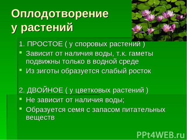 Оплодотворение у растений 1. ПРОСТОЕ ( у споровых растений ) Зависит от наличия воды, т.к. гаметы подвижны только в водной среде Из зиготы образуется слабый росток 2. ДВОЙНОЕ ( у цветковых растений ) Не зависит от наличия воды; Образуется семя с зап…
