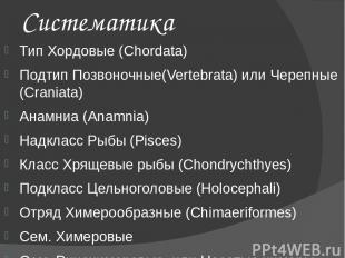 Систематика Тип Хордовые (Chordata) Подтип Позвоночные(Vertebrata) или Черепные