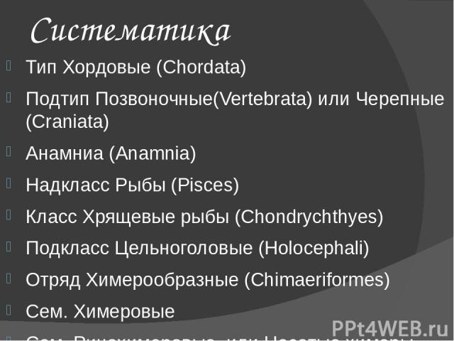 Систематика Тип Хордовые (Chordata) Подтип Позвоночные(Vertebrata) или Черепные (Craniata) Анамниа (Anamnia) Надкласс Рыбы (Pisces) Класс Хрящевые рыбы (Chondrychthyes) Подкласс Цельноголовые (Holocephali) Отряд Химерообразные (Chimaeriformes) Сем. …