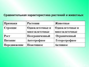 Сравнительная характеристика растений и животных Признаки Растения Животные Стро