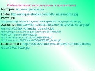 Сайты картинок, используемых в презентации Бактерии http://www.cybersecurity.ru
