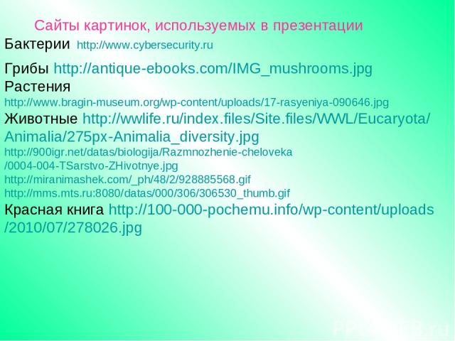 Сайты картинок, используемых в презентации Бактерии http://www.cybersecurity.ru Грибы http://antique-ebooks.com/IMG_mushrooms.jpg Растения http://www.bragin-museum.org/wp-content/uploads/17-rasyeniya-090646.jpg Животные http://wwlife.ru/index.files/…