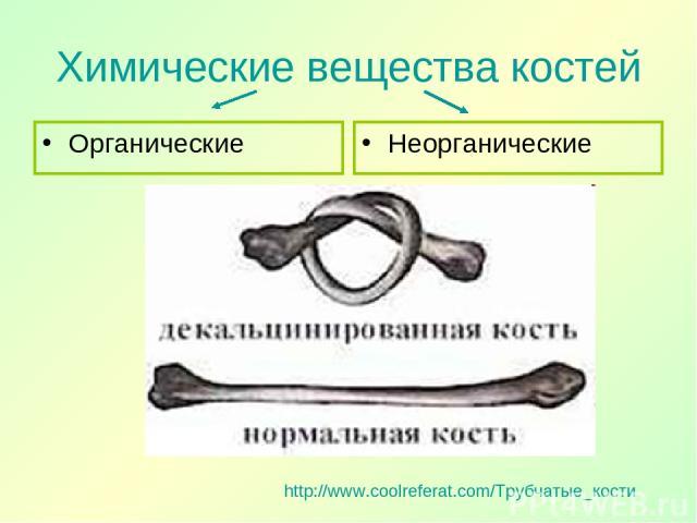 Химические вещества костей Органические Неорганические http://www.coolreferat.com/Трубчатые_кости