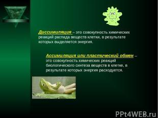 * Диссимиляция – это совокупность химических реакций распада веществ клетки, в р