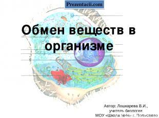 Обмен веществ в организме Автор: Лошкарева В.И., учитель биологии МОУ «Школа №44