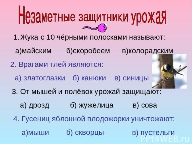 Жука с 10 чёрными полосками называют: а)майским б)скоробеем в)колорадским 2. Врагами тлей являются: б) канюки в) синицы а) златоглазки 3. От мышей и полёвок урожай защищают: а) дрозд б) жужелица в) сова 4. Гусениц яблонной плодожорки уничтожают: а)м…